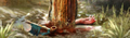 Thumbnail for version as of 22:06, May 13, 2014