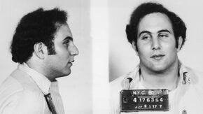Berkowitz 1977 Arrest