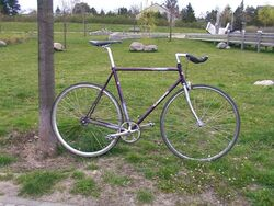 Belgisches Diamant - Fixed Gear