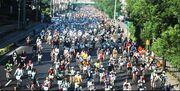 Crowd rodneytan