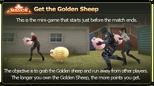 Guide Sheep7