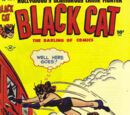 Black Cat Comics Vol 1 13