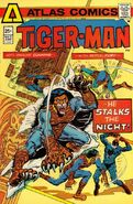 Tiger-Man Vol 1 2