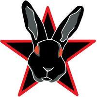 Blackrabbitblack-jaminh2-logo