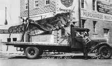 1936haulinhopper lg