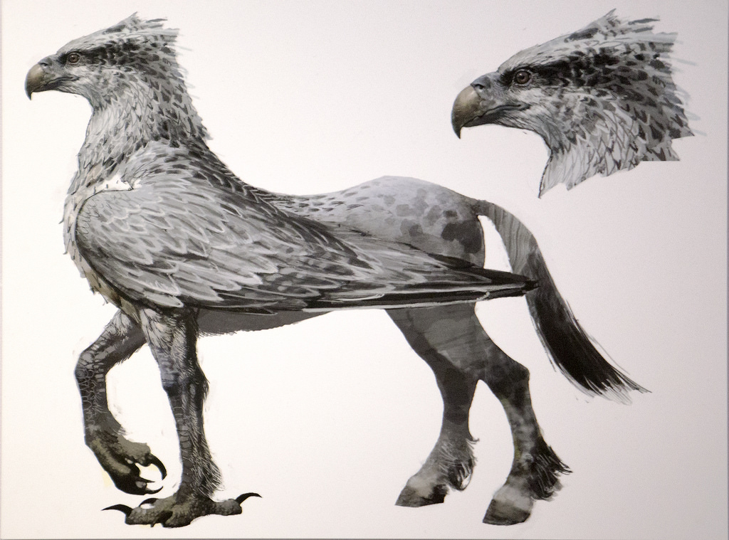 Hippogriff | Cryptid Wiki | FANDOM powered by Wikia