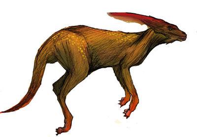 Odd kangaroo by conceptheim