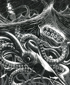 Historical giant squid