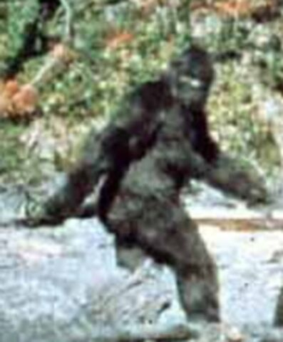 File:Patterson-bigfoot.jpg