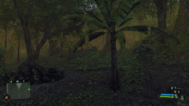 File:Crysis 2012-02-11 21-14-55-09.jpg