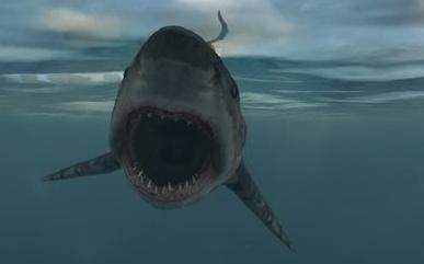 Datei:Shark-Crysis.png