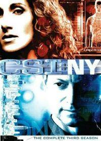 CSI NY Season Three