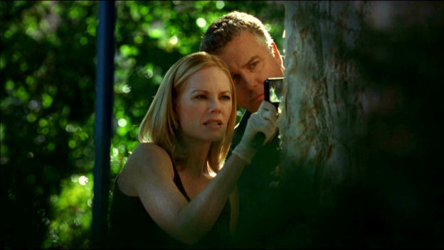 The Execution of Catherine Willows