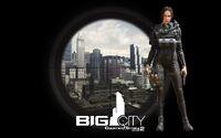 Lisa bigcity