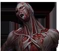 Zombie nomal