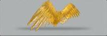 Winggold