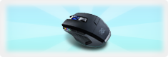 Coineventgift2 mouse