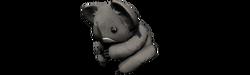 Head koala b