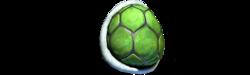 Back turtleshell b