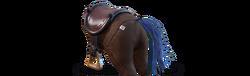 Back horseyear b