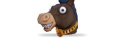 Head horseyear b