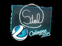 Csgo-col2015-sig steel large
