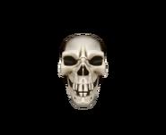 Csgo Facemask skull