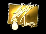 Csgo-col2015-sig fox gold large