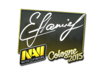 Csgo-col2015-sig flamie large