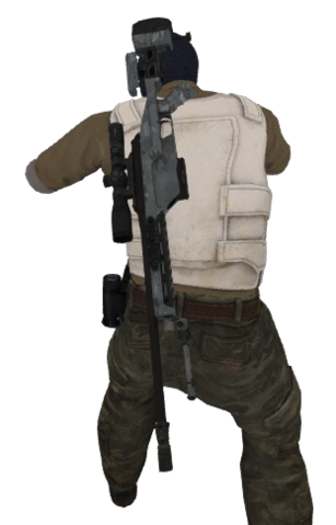 File:P ssg08 t back.png