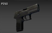 P250 purchase