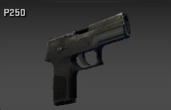 File:P250 purchase.png