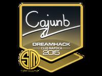 Csgo-cluj2015-sig cajunb large-10-23