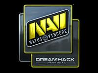 Csgo-dreamhack2014-navi foil large