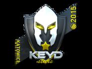 Csgo-kat2015-keyd foil large
