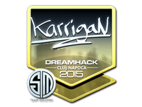 Csgo-cluj2015-sig karrigan foil large
