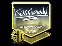 Csgo-cluj2015-sig karrigan foil large-10-23