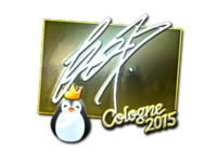 Csgo-col2015-sig fox foil large