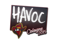Csgo-col2015-sig havoc large