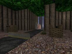 As forest0021 turrets-VIP escape zone