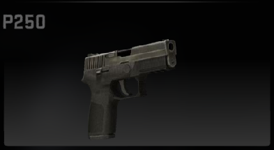 File:Csgop250.png