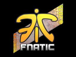 File:Csgo-kat2015-fnatic holo-20150306.png