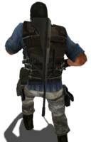 P aug holster css