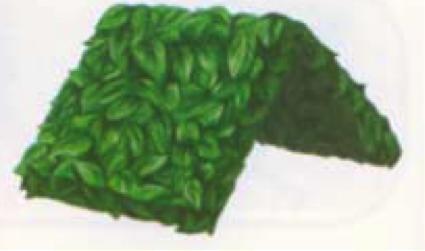 File:Vegetabug manual.png