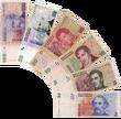 Argentine peso notes