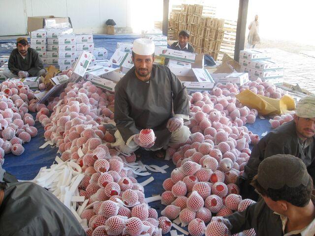 File:Afghan pomegranate processing.jpg