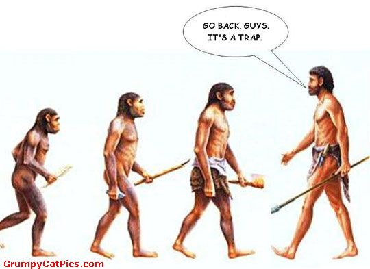 File:The-Evolution-Of-The-Human-Species-Stopped-.jpg