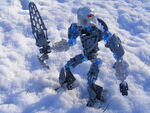 Ihu in Snow