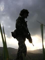 POSDF peacekeeper