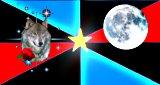 NPO-rosewolfmoon-small